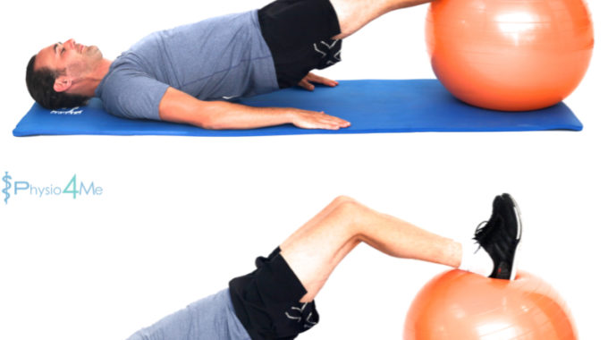 Exercise Ball – Hamstring Curl